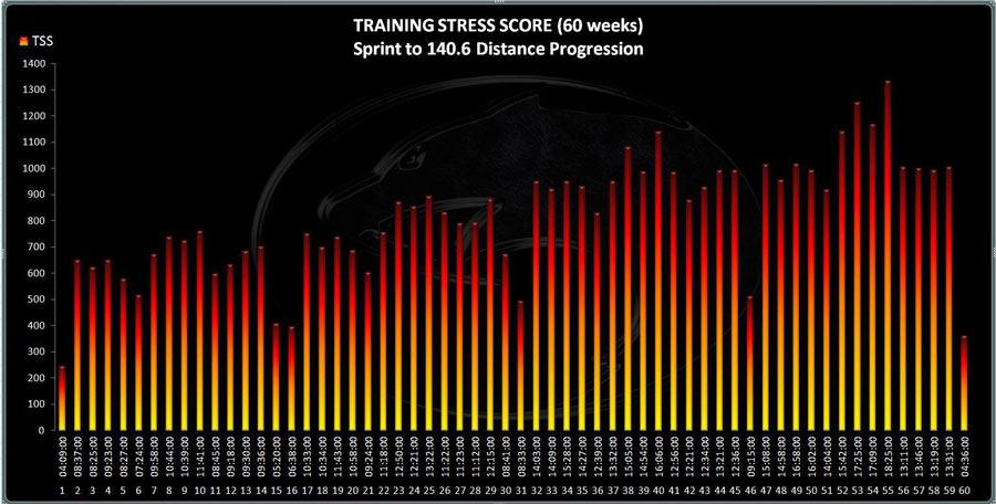 60-weeks-progression-graph
